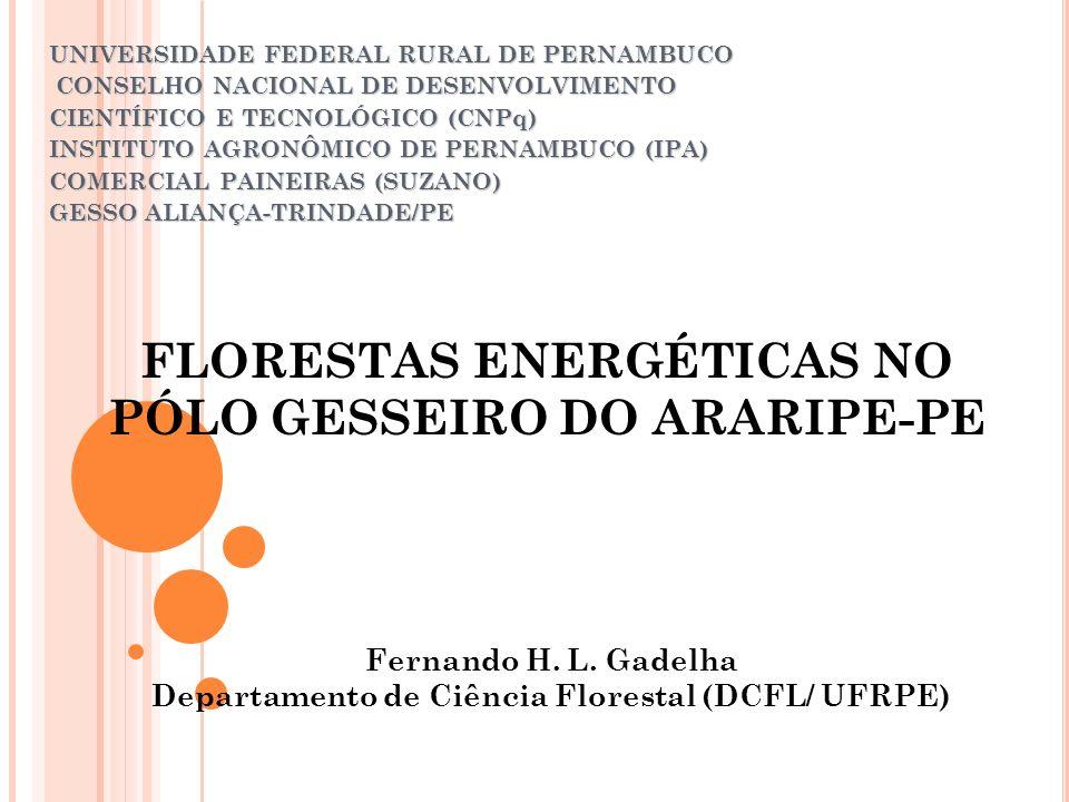 FLORESTAS ENERGÉTICAS NO PÓLO GESSEIRO DO ARARIPE-PE