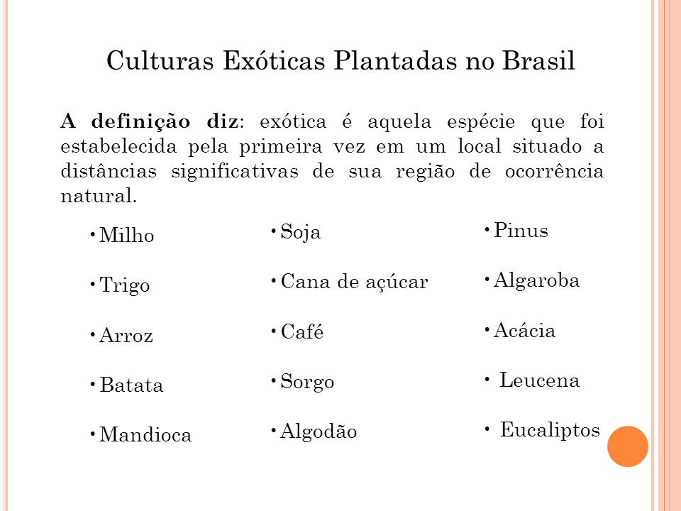 Culturas Exóticas Plantadas no Brasil