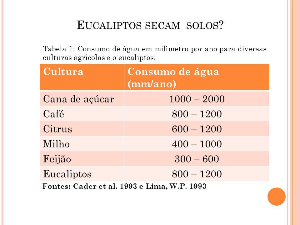 Eucaliptos secam solos