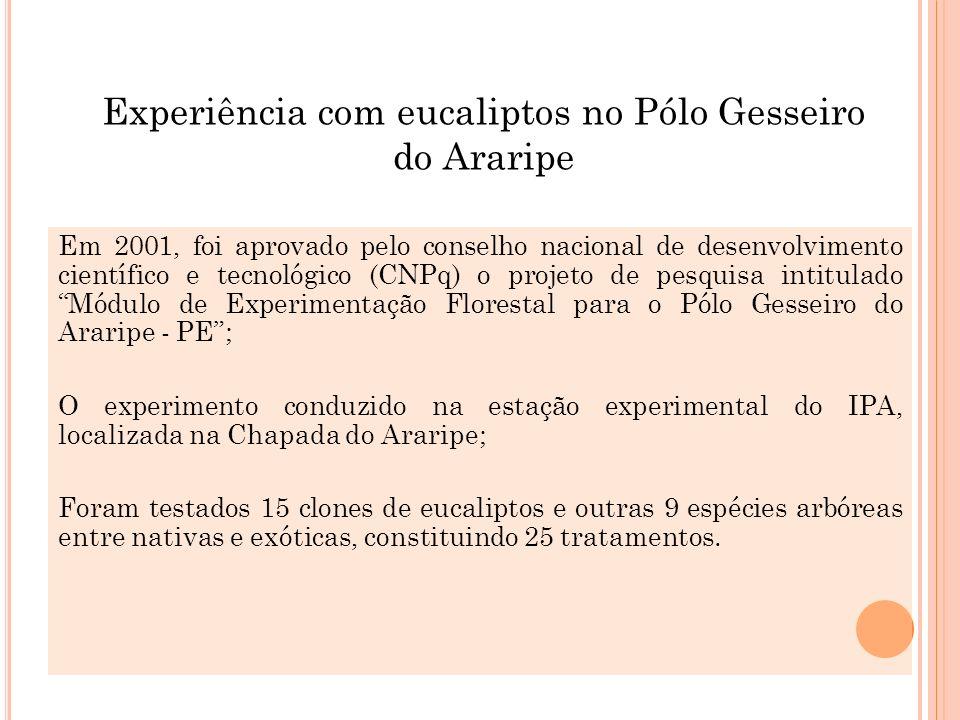 Experiência com eucaliptos no Pólo Gesseiro do Araripe