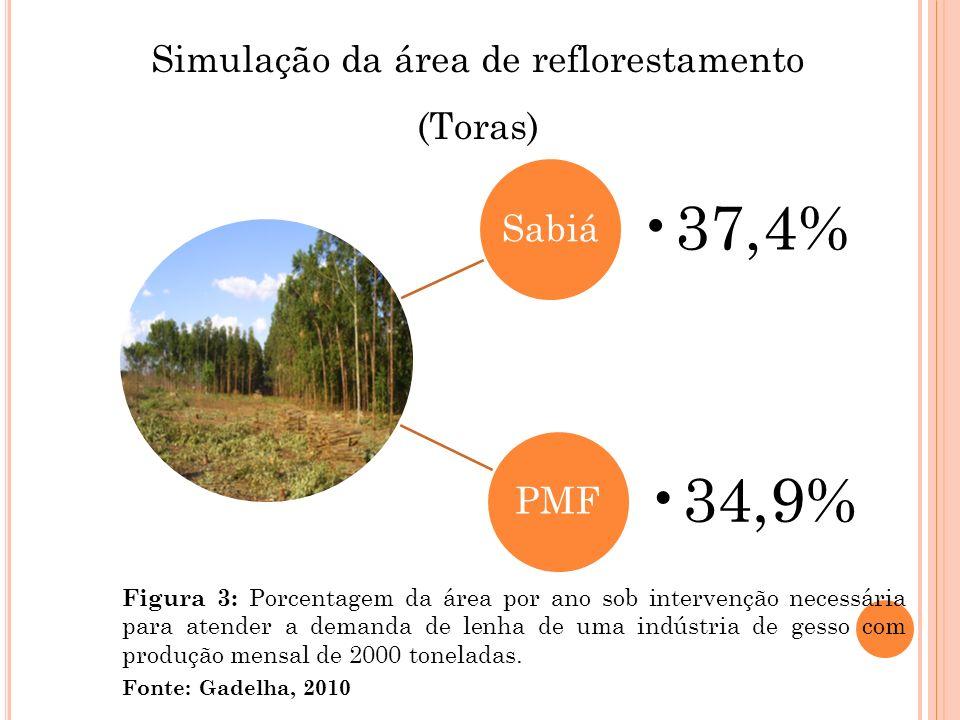 Simulação da área de reflorestamento