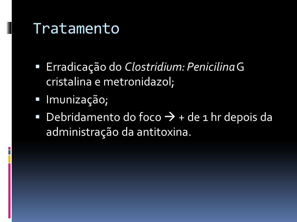 Tratamento Erradicação do Clostridium: Penicilina G cristalina e metronidazol; Imunização;
