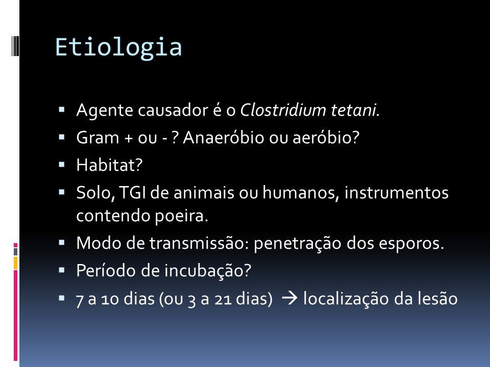 Etiologia Agente causador é o Clostridium tetani.