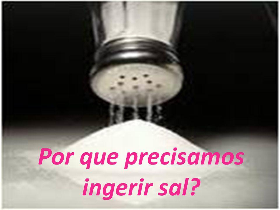 Por que precisamos ingerir sal