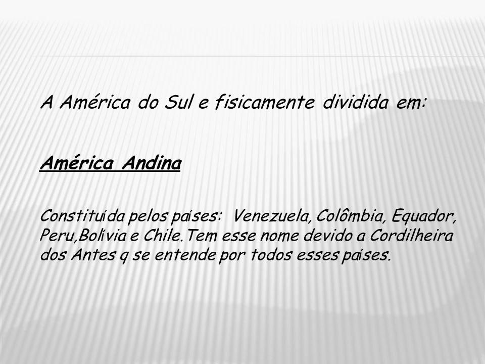 A América do Sul e fisicamente dividida em: