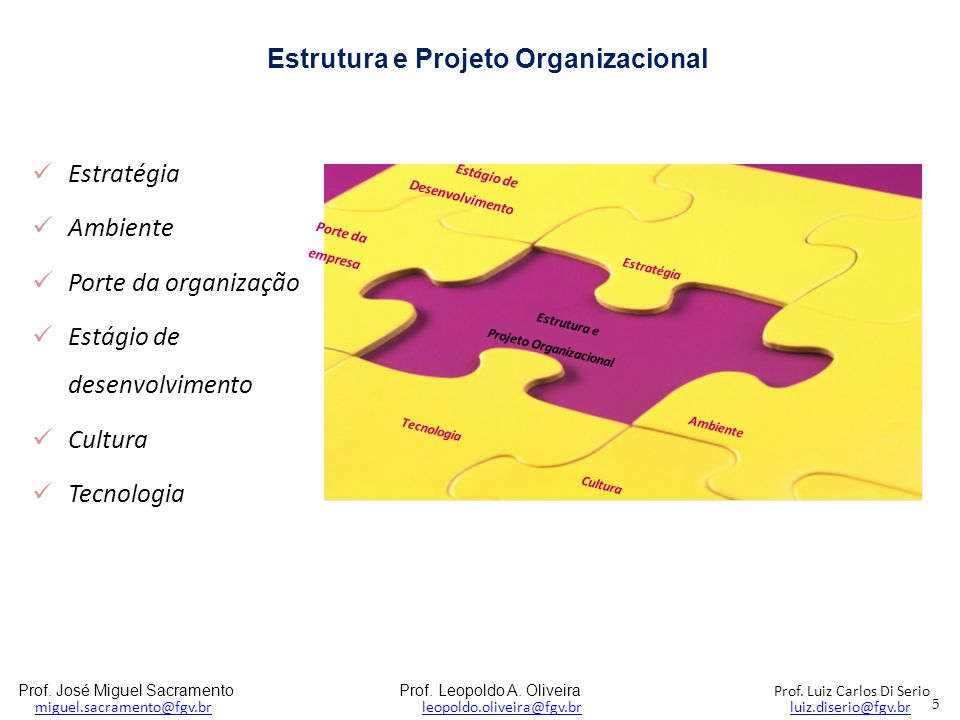 Estrutura e Projeto Organizacional