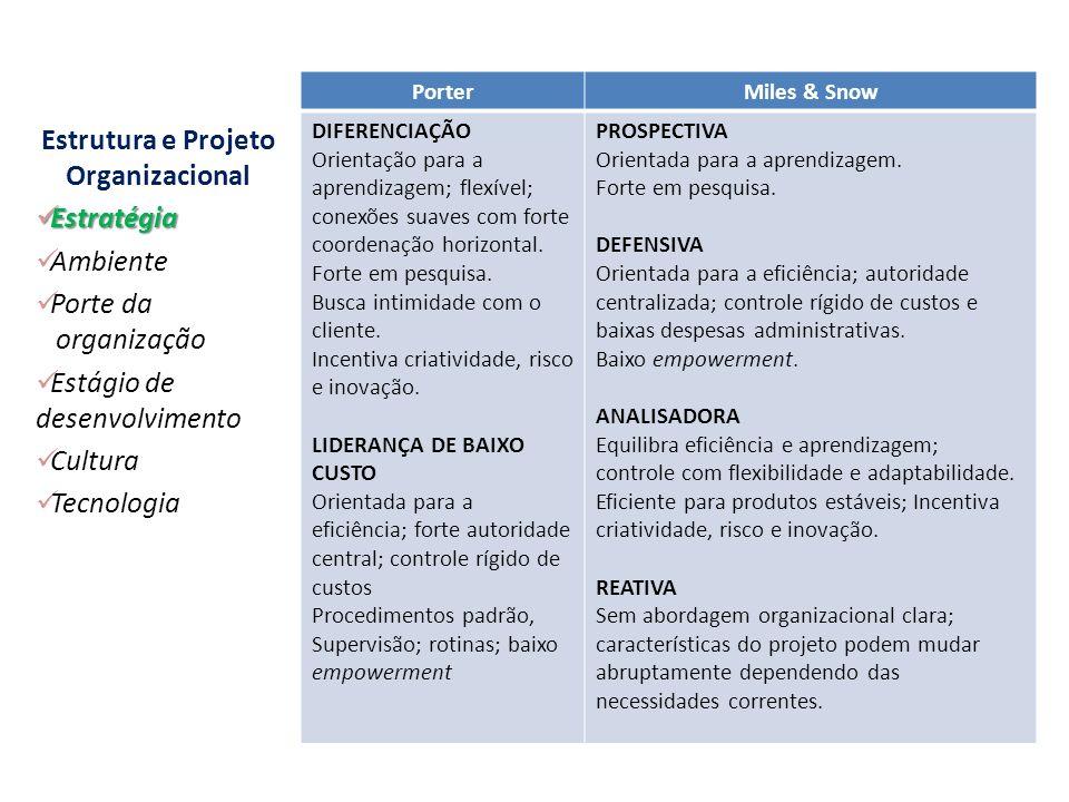Estratégia da Organização