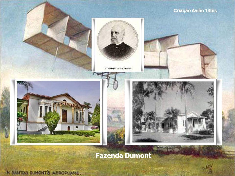Criação Avião 14bis Fazenda Dumont