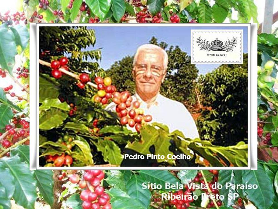 Pedro Pinto Coelho Pedro Pinto Coelho O Rei do Café