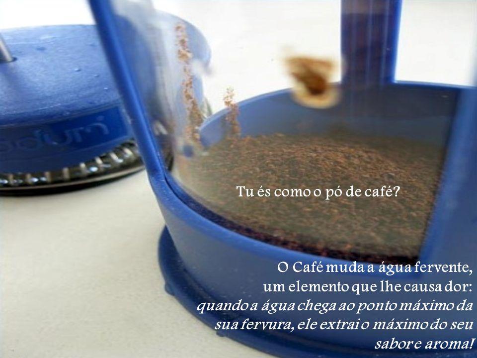 Tu és como o pó de café O Café muda a água fervente, um elemento que lhe causa dor: