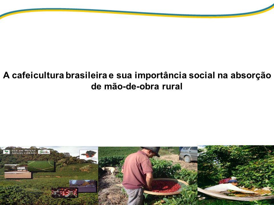 A cafeicultura brasileira e sua importância social na absorção de mão-de-obra rural