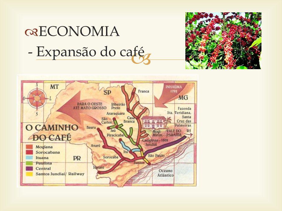 ECONOMIA - Expansão do café