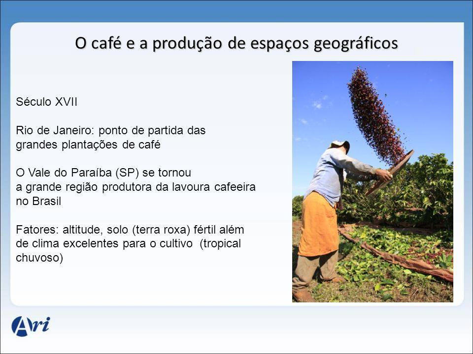O café e a produção de espaços geográficos