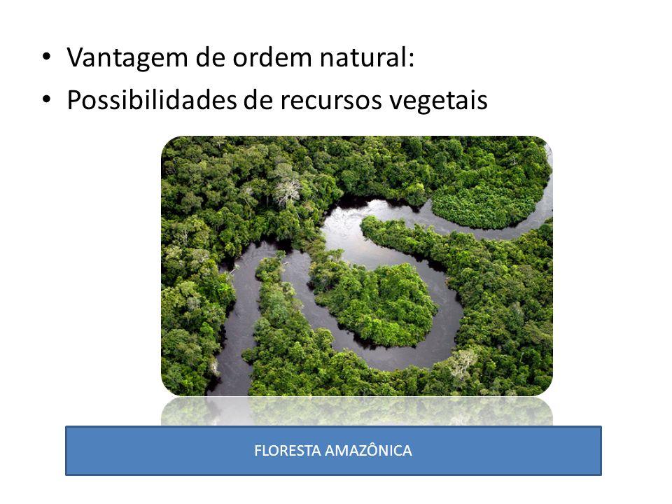 Vantagem de ordem natural: Possibilidades de recursos vegetais