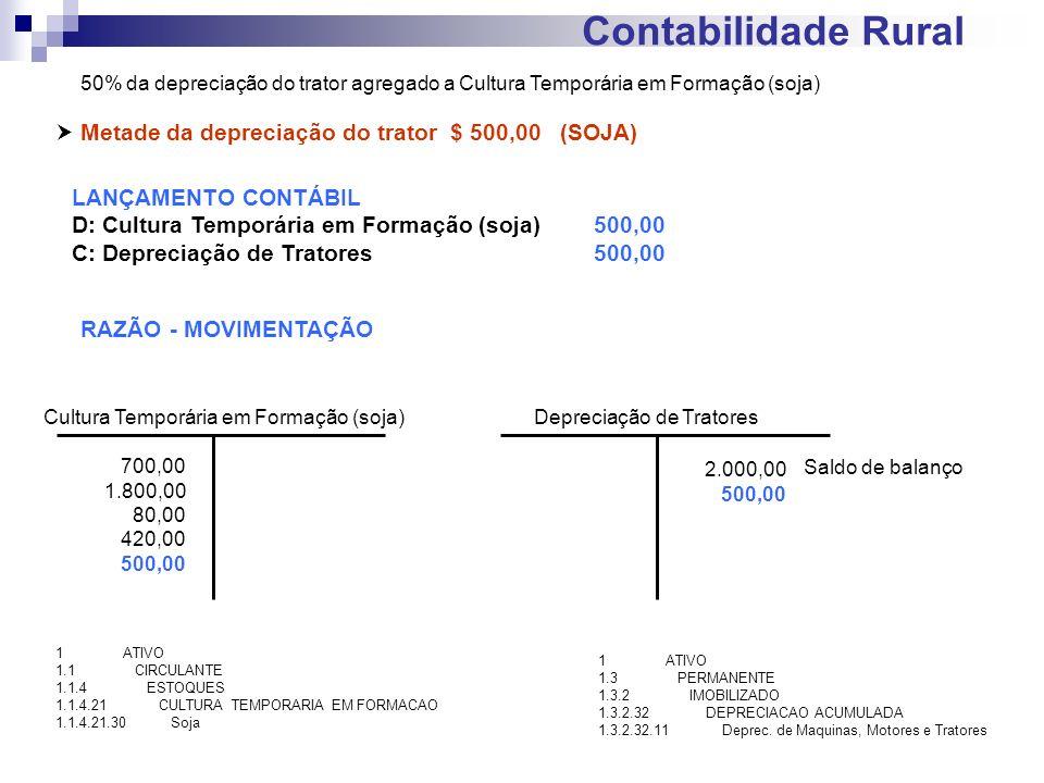 Contabilidade Rural  Metade da depreciação do trator $ 500,00 (SOJA)
