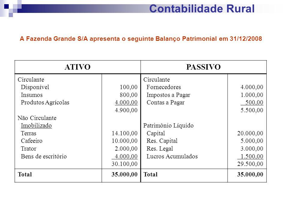 Contabilidade Rural ATIVO PASSIVO