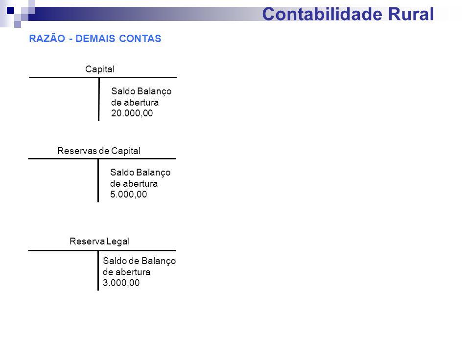 Contabilidade Rural RAZÃO - DEMAIS CONTAS Capital Saldo Balanço