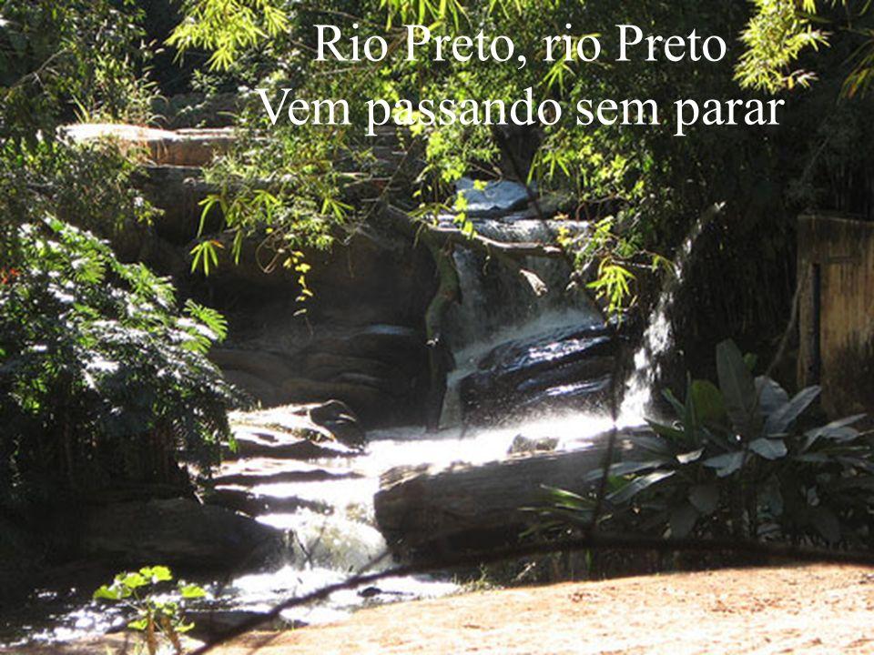 Rio Preto, rio Preto Vem passando sem parar