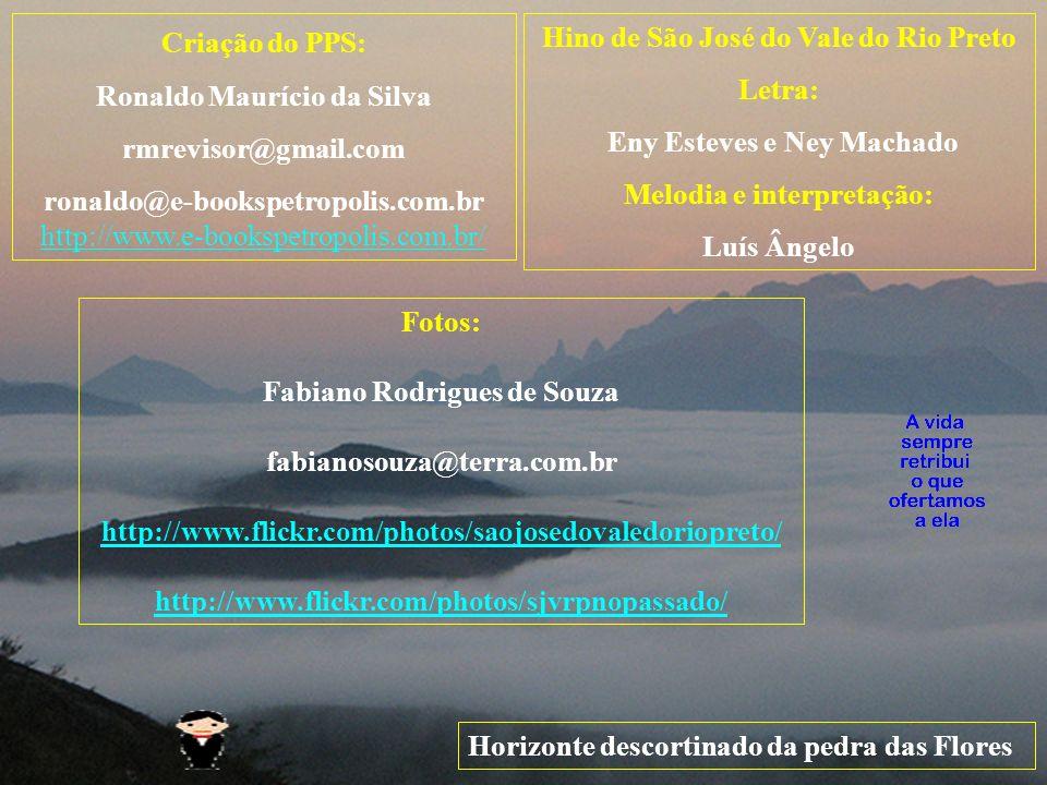 Ronaldo Maurício da Silva rmrevisor@gmail.com
