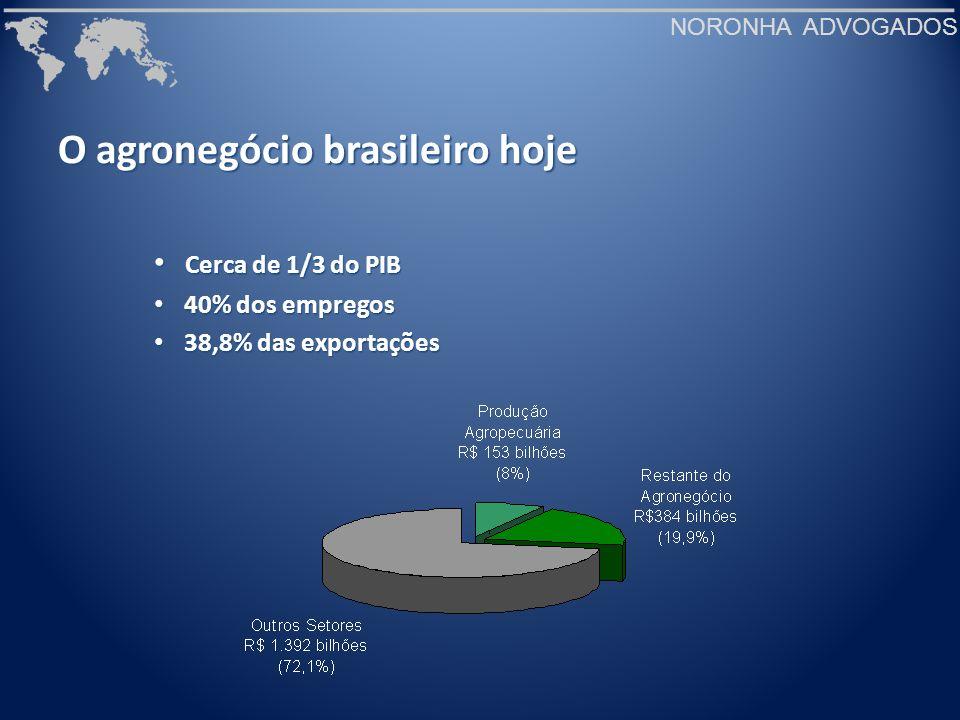 O agronegócio brasileiro hoje