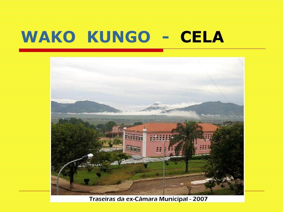 WAKO KUNGO - CELA