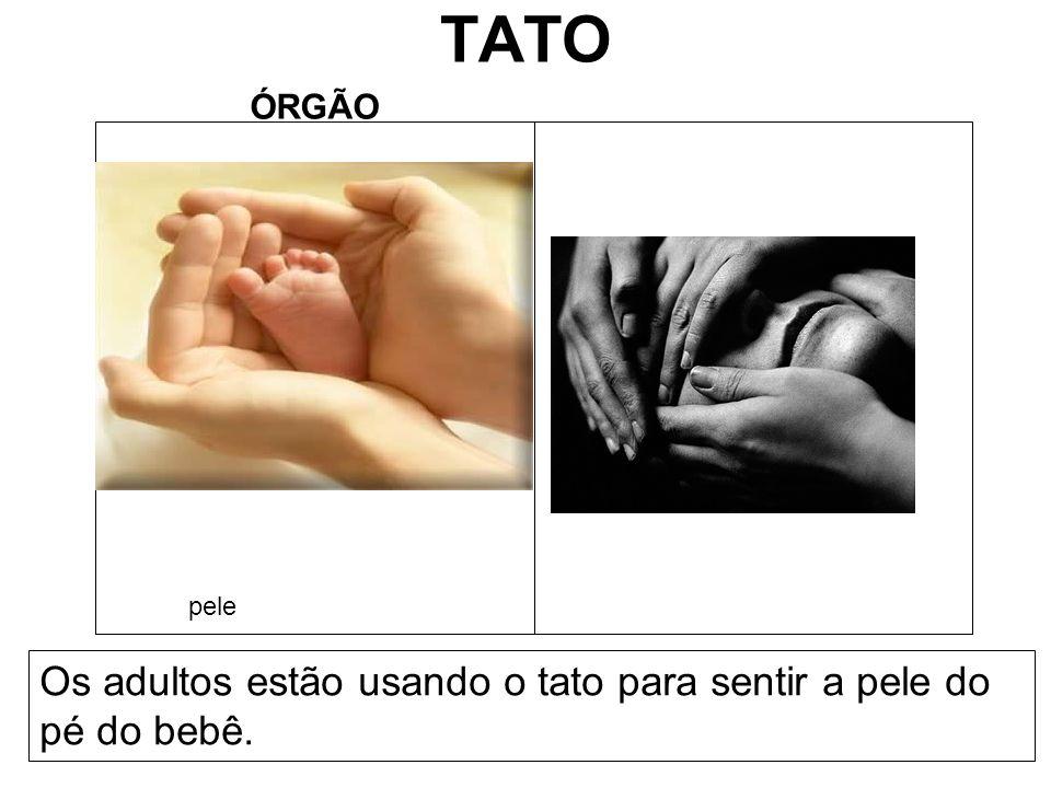 TATO Os adultos estão usando o tato para sentir a pele do pé do bebê.