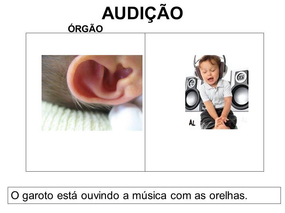 AUDIÇÃO ÓRGÃO O garoto está ouvindo a música com as orelhas.