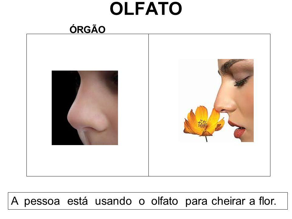 OLFATO ÓRGÃO A pessoa está usando o olfato para cheirar a flor.