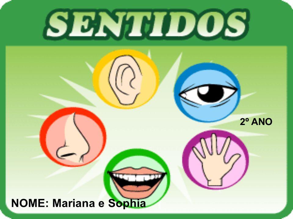 2º ANO NOME: Mariana e Sophia