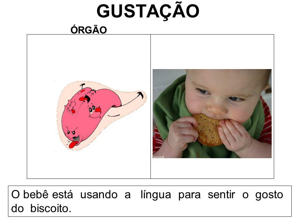 GUSTAÇÃO O bebê está usando a língua para sentir o gosto do biscoito.