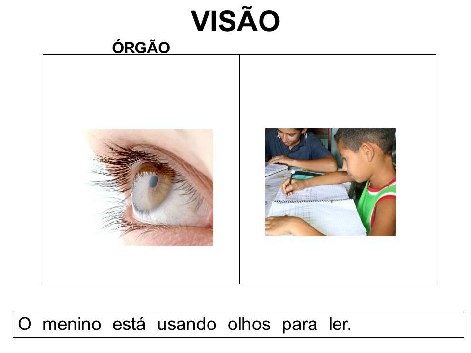 VISÃO ÓRGÃO O menino está usando olhos para ler.