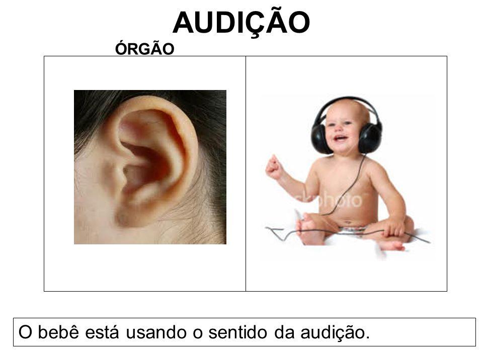 AUDIÇÃO ÓRGÃO O bebê está usando o sentido da audição.
