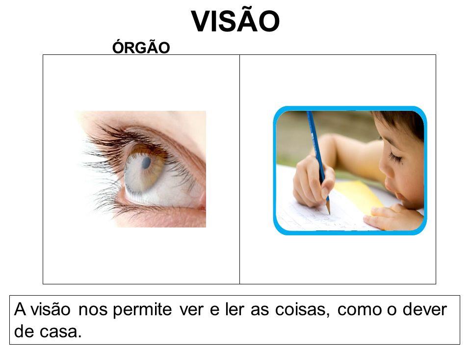 VISÃO A visão nos permite ver e ler as coisas, como o dever de casa.