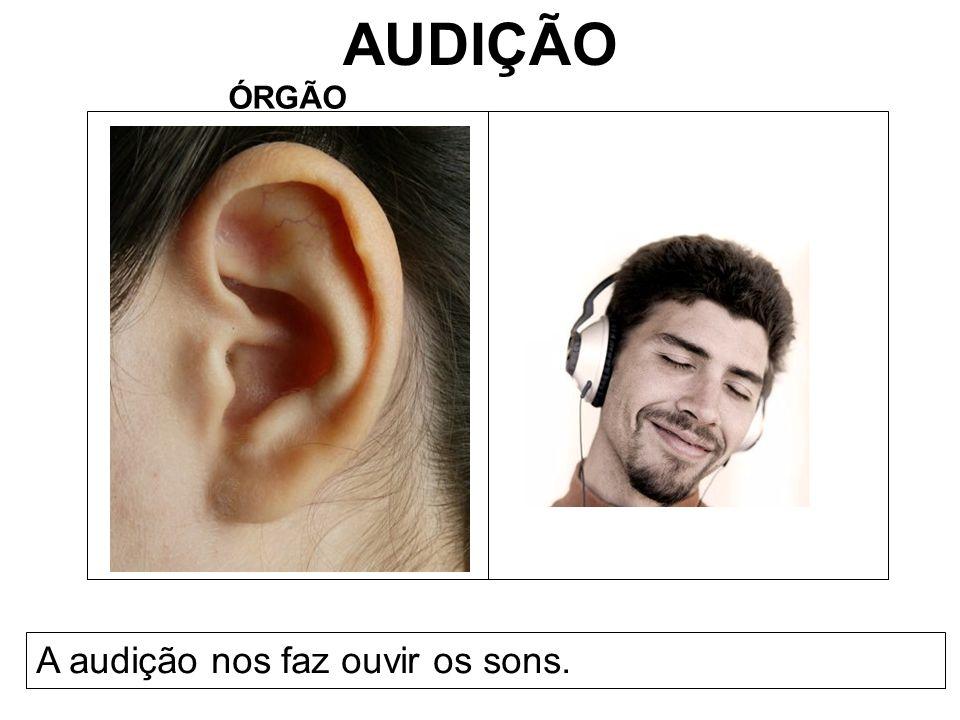 AUDIÇÃO ÓRGÃO A audição nos faz ouvir os sons.