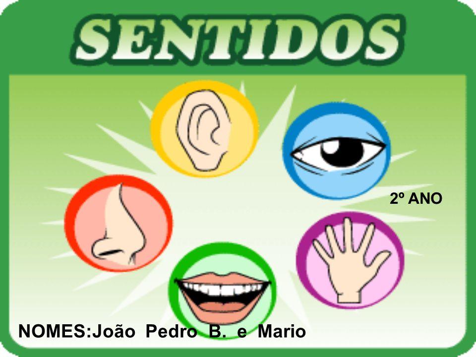 NOMES:João Pedro B. e Mario