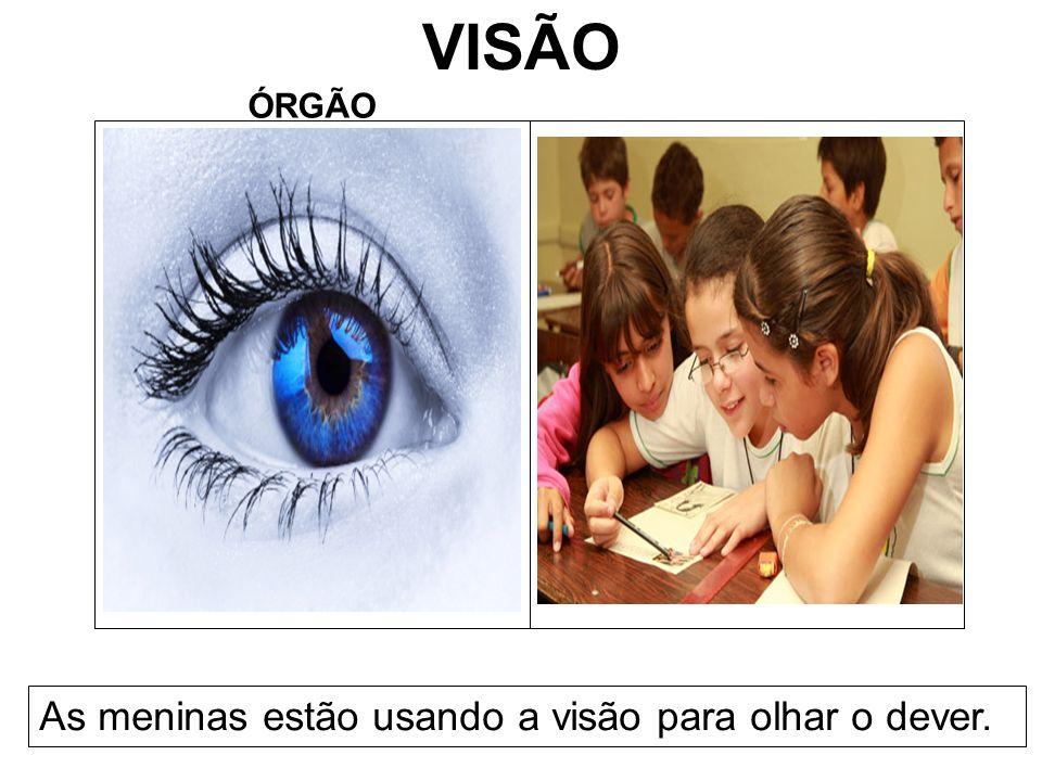 VISÃO ÓRGÃO As meninas estão usando a visão para olhar o dever.