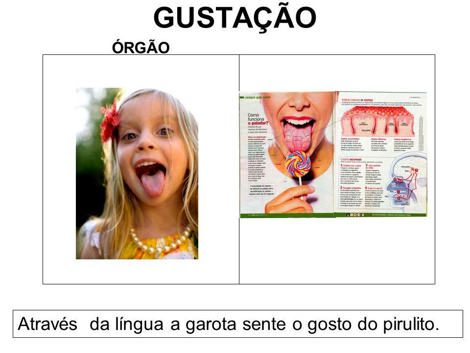 GUSTAÇÃO ÓRGÃO Através da língua a garota sente o gosto do pirulito.