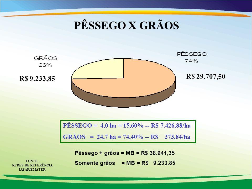 FONTE: REDES DE REFERÊNCIA IAPAR/EMATER