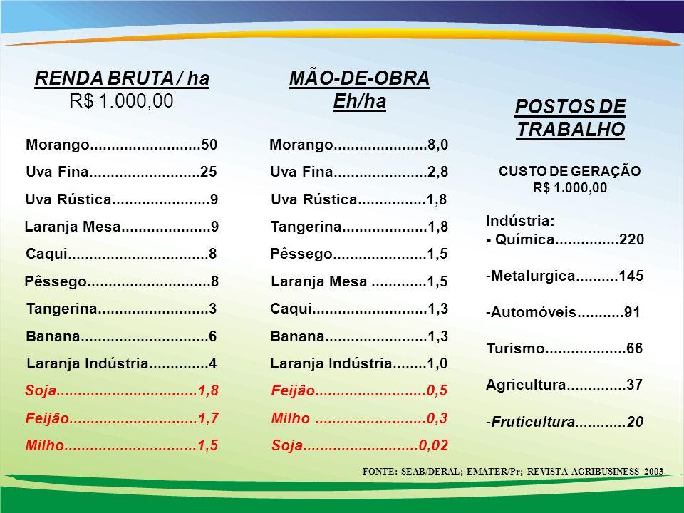 FONTE: SEAB/DERAL; EMATER/Pr; REVISTA AGRIBUSINESS 2003