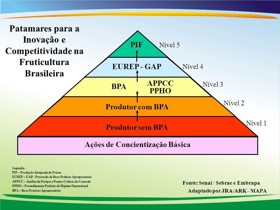 Patamares para a Inovação e Competitividade na Fruticultura Brasileira