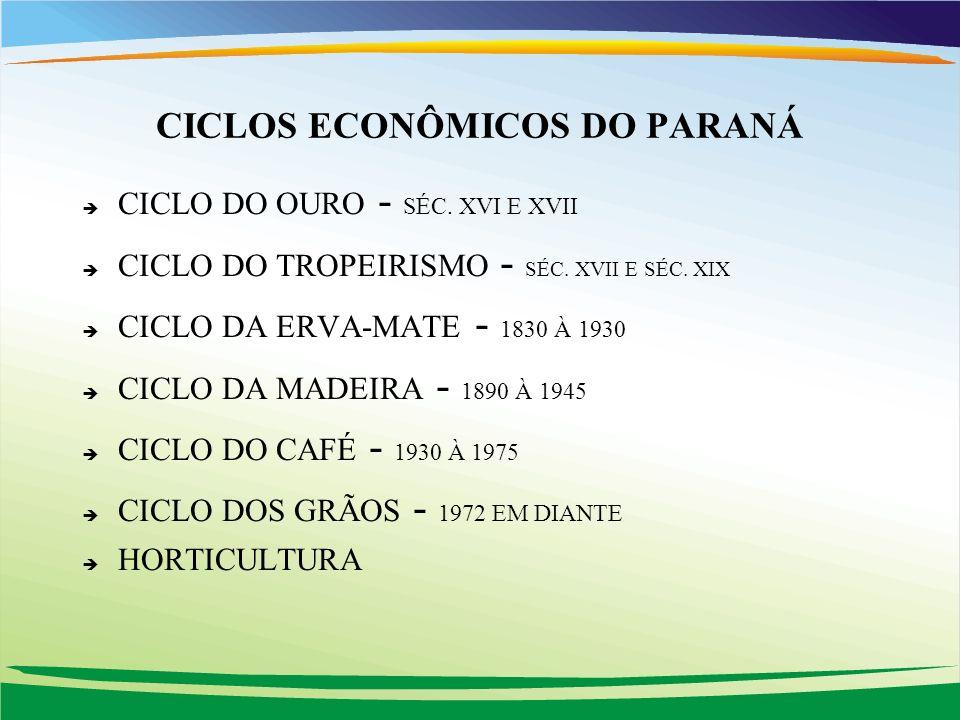CICLOS ECONÔMICOS DO PARANÁ
