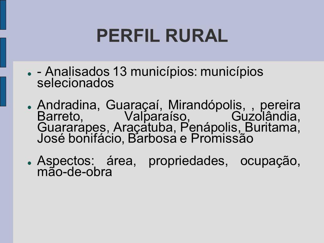 PERFIL RURAL - Analisados 13 municípios: municípios selecionados