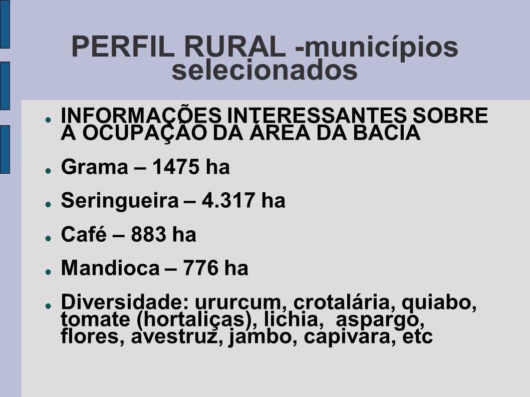 PERFIL RURAL -municípios selecionados