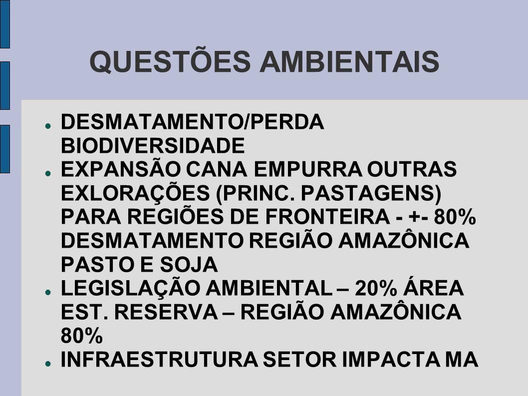 QUESTÕES AMBIENTAIS DESMATAMENTO/PERDA BIODIVERSIDADE