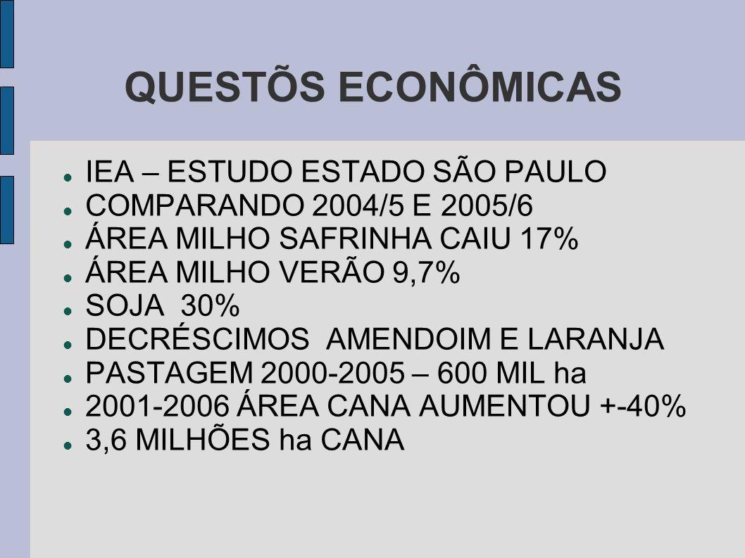 QUESTÕS ECONÔMICAS IEA – ESTUDO ESTADO SÃO PAULO