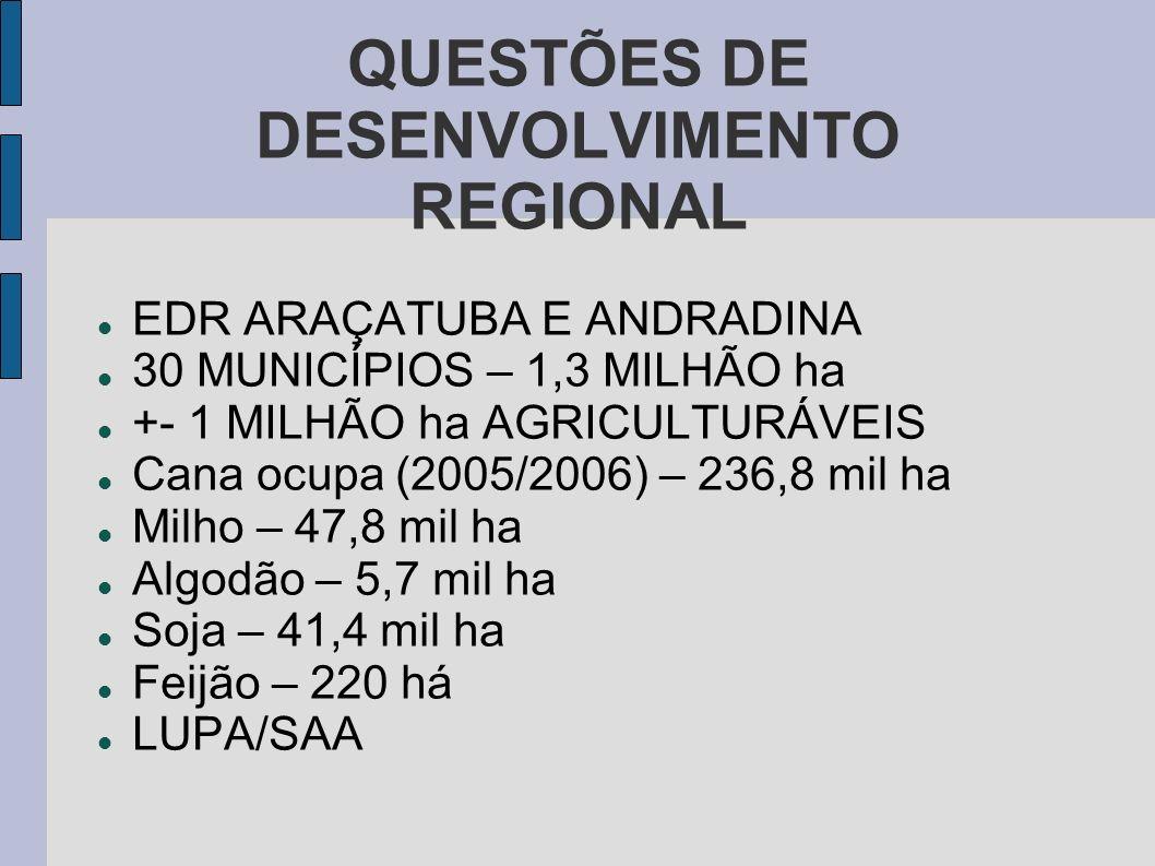 QUESTÕES DE DESENVOLVIMENTO REGIONAL
