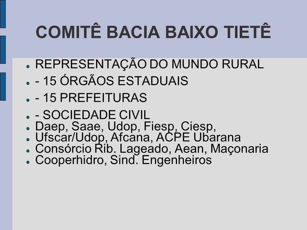 COMITÊ BACIA BAIXO TIETÊ