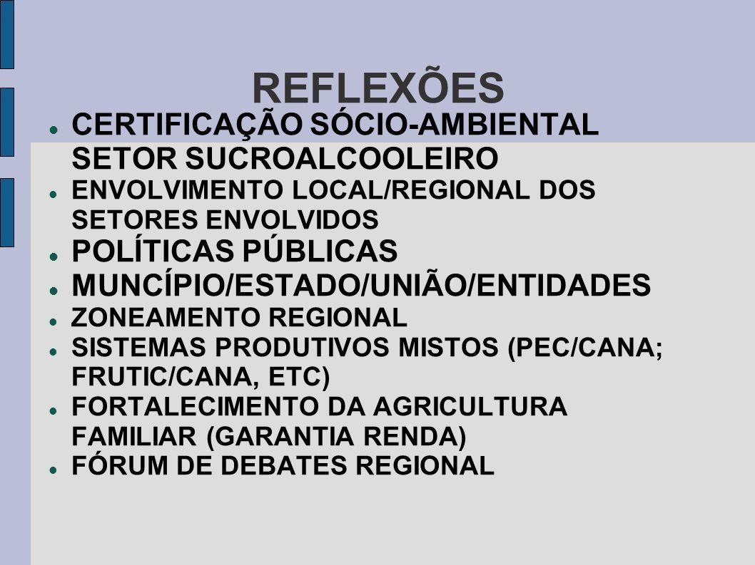 REFLEXÕES CERTIFICAÇÃO SÓCIO-AMBIENTAL SETOR SUCROALCOOLEIRO