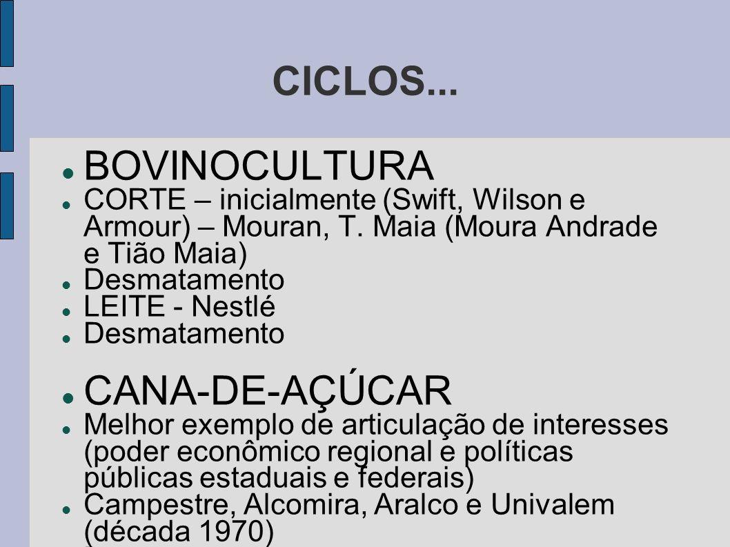 CICLOS... BOVINOCULTURA CANA-DE-AÇÚCAR