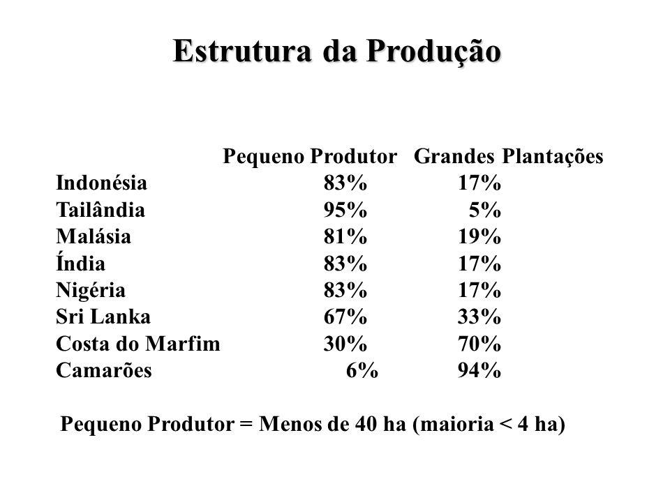 Pequeno Produtor = Menos de 40 ha (maioria < 4 ha)